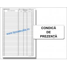 Condica de Prezenta - 100 file